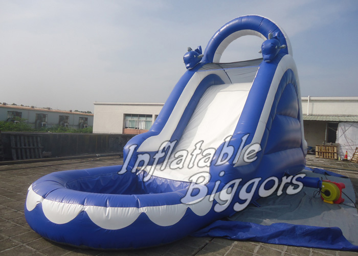 Customized Inflatable Water Slide With Pool And Climbing Walls