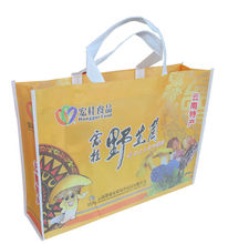 Eco friendly sublimation printed pet shopping bag