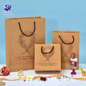 All Kinds Of Dissimilarity clothing paper bags with your own logo