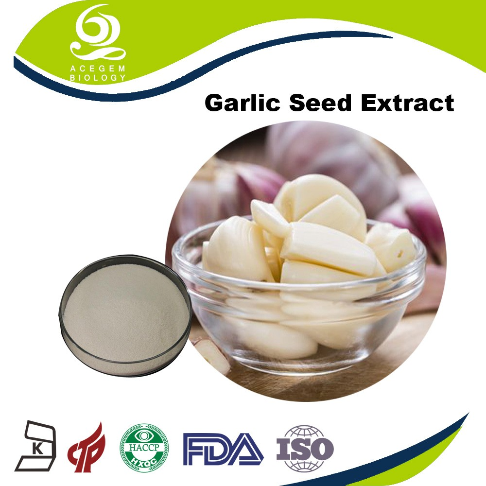 Chinese herb garlic extract powder/animals feeds raw material
