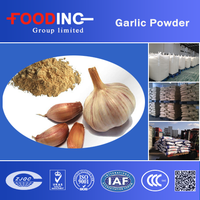 Chinese A Grade Dehydrated Garlic Powder Without Root In Bottle