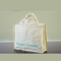 pp non woven bag /shopping bag