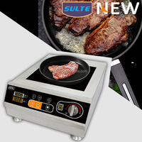 NEW Design 5000 watts Commercial Induction Cooker For Frying