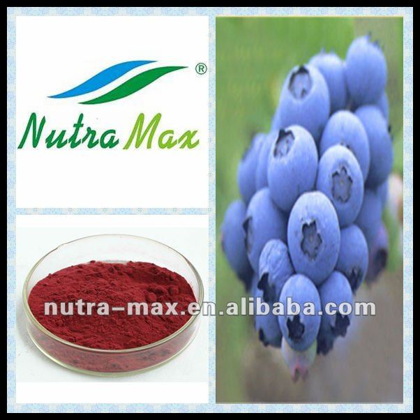 Bilberry p.e. (Anthocyanosides 5%,10%,15%,20%,25%)