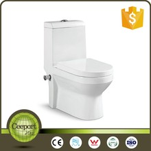C-49A 2017 WC Spy Toilet Cam One Piece Toilet Seat Cover For Toilet