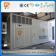 battery charging alternator diesel generator from Tang power