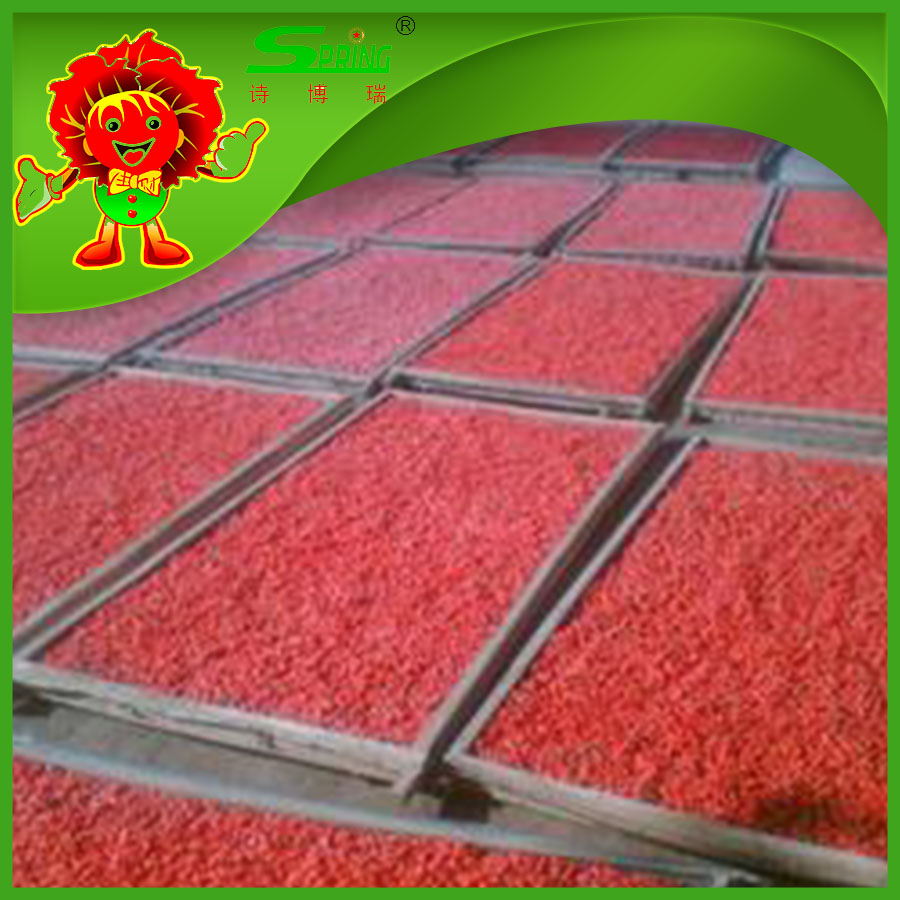 Chinese goji berries dried berry fruit for weight loss