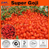 Kosher,ISO,HACCP Certified Ceres Certified Superfine Goji Berry