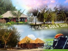 3 acres Palm oil land next to Sepang Gold Coast