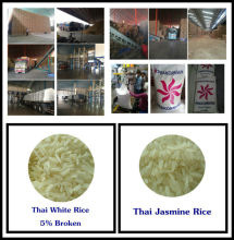 Thai Rice with High Quality and Cheap Price.
