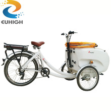 Pedal electric tricycle cargo bike