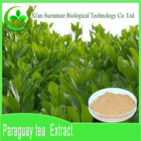 Factory Direct Supply High Quality pure natural Yerba mate Extract powder by HPLC
