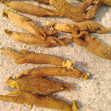 high quality products Chinese herb medicine in bulk 6-8years red ginseng