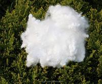 100% virgin hollow conjugated polyester Staple Fiber in white