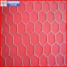 Electro Galvanized Hexagonal mesh/chicken fence (Specialized Production)
