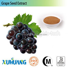 High quality Best Water soluble grape seed extract,grape seed extract powder