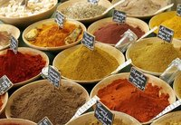 export agent for spices