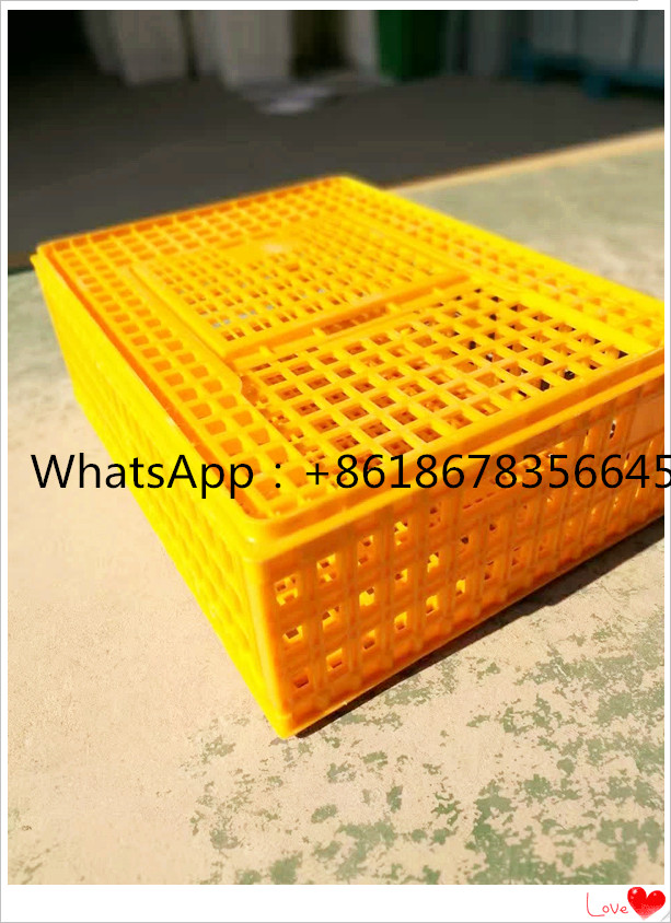 Pure material high quality chicken transport crate / chicken carry box