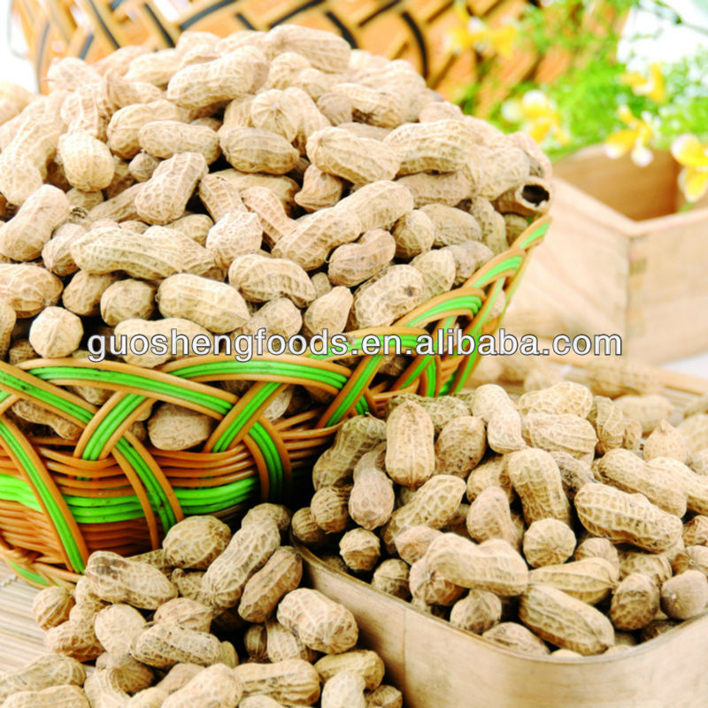 2013 good quality big shandong raw peanuts in shell