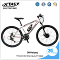 XTASY electric bicycle cheap chinese electric mounatin bike ,electric bikes for sale