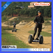 European 19 inch Wheel Freegoing Off-road Electric Scooter 2400w for Tourism Rental with Lithium Battery