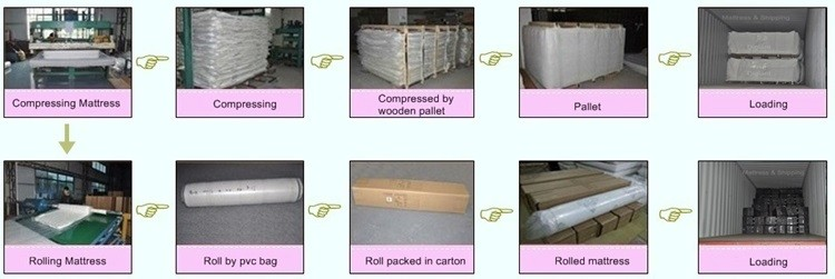 latex foam roll packed mattress