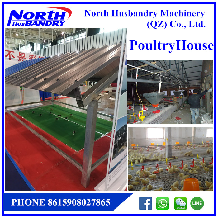 FARMKEYS | Automatic pan feeding system for breeder/broiler/chicken farm