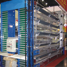 March Expo big discount Chicken battery cages for layers for poultry farms in ghana
