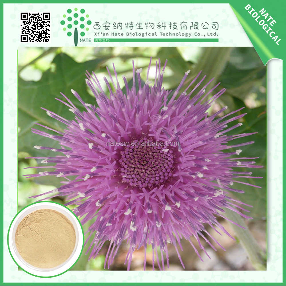 Provide hiqh quality 100% Natural Milk Thistle powder for capsule specs with Silybum Silymarin 80% UV and 30% Silybin HPLC