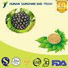 Bulk Pure supply 0.8% Eleutheroside B+E / Siberian Ginseng Extract Powder for Nutraceuticals Pharmaceuticals