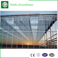 Aquaponics New Condition Photovoltaic Glass Greenhouses