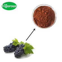 organic 5%Resveratrol extract red grape skin extracts