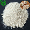 Plant manufactory dehydrated garlic powder