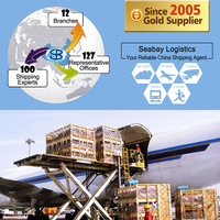 professional air freight forwarder China to hungary