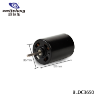high speed 20000rpm small electric 6v brushless dc motor