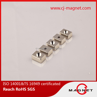 good induction connection reasonable price permanent rare earth Neodymium magnet for linear motor