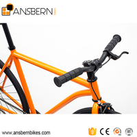 CE Approved 700C Hi- Ten Steel Sepeda Fixie ASB - FG - S02