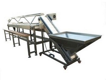 Olive Selection Belt with Loading Elevator