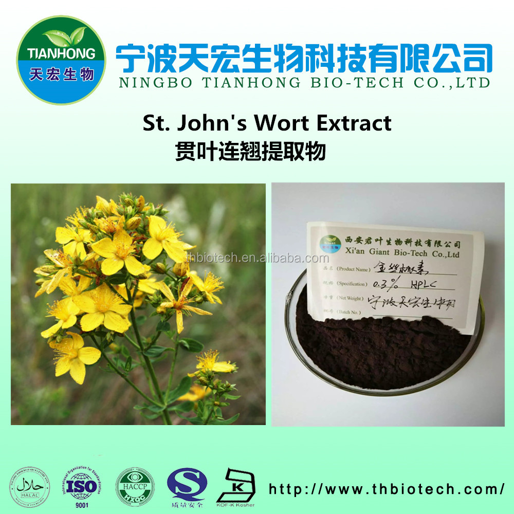 Natural St.John's Wort Extract for Food Additive St.John's Wort P.E hypericin