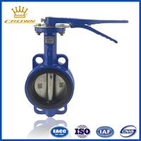 Cast Iron Manual-Operated Wafer Butterfly Valve
