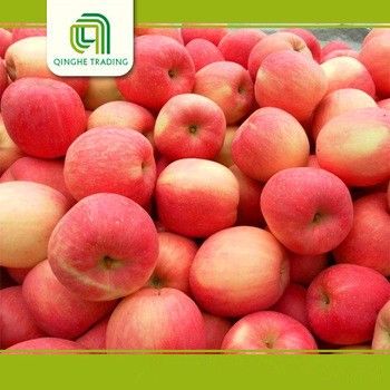 farm fresh sweet pepper fresh fuji apples sweet apples organic apples with great price