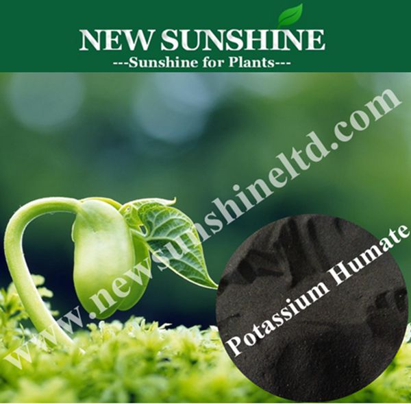 Super Potassium humate shiny flakes with 90% Organic matter