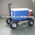 hot sell cooler scooler with best quality