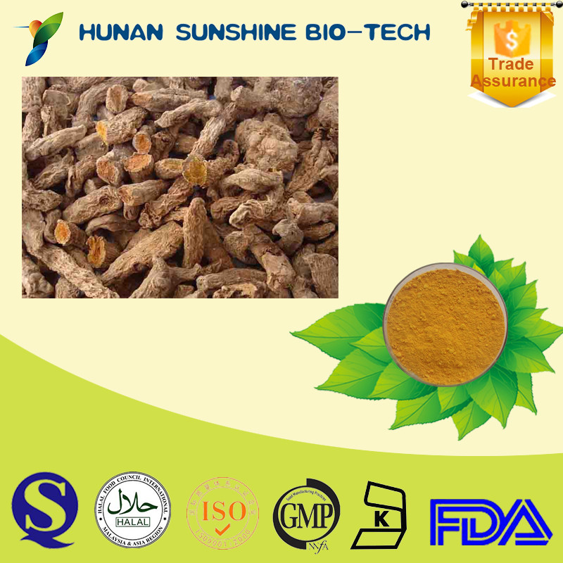 Healthcare Raw Materials Organic Natural Turmeric Root Extract 95% Curcumin