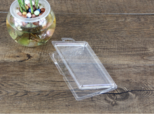 Clear plastic produce packaging clamshell containers