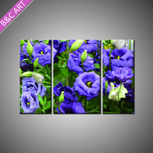 Best Office Decoration Nice 3 Piece Beautiful Flower Scenery Painting with Stretcher Bar