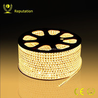 high cost performance 60 led/m 220v strip led smd 5050