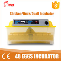 YZ8-48 CE approved full automatic quail egg hatcher for sale (48 eggs)