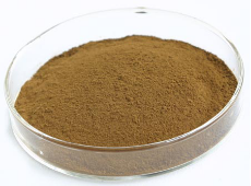 100% natural high quality Cimicifuga racemosa Extract