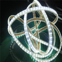 ETL 6000K cool white led strip Smd 5050 110v 220v led strip 5050 smd led light strip two line 144 led